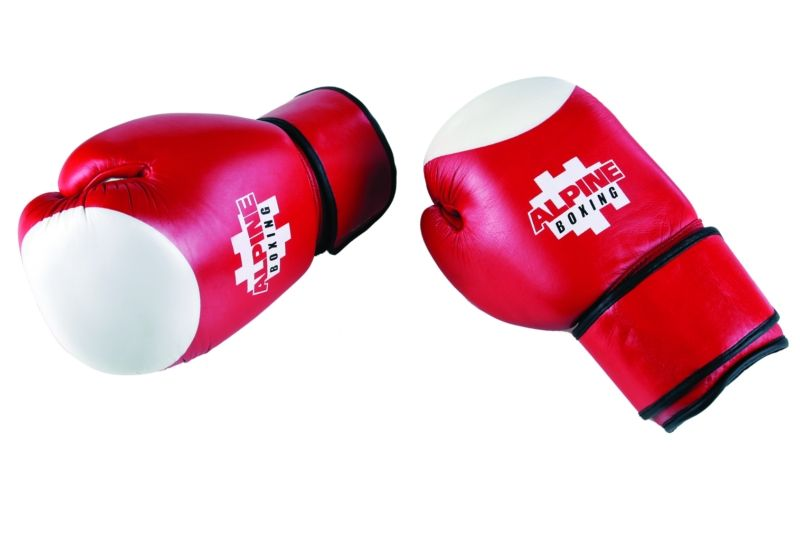 Γάντια Boxing Alpine Cowhide
